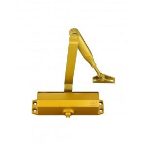 VIER VDC003 SIZE 3 FIXED POWER DOOR CLOSER GOLD